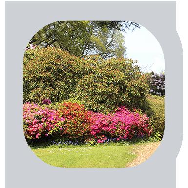 Plastino & Son Landscape Contractors Guarantee